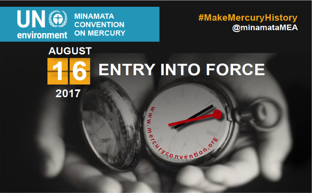 First Conference of the Parties to the Minamata Convention on Mercury (COP1)